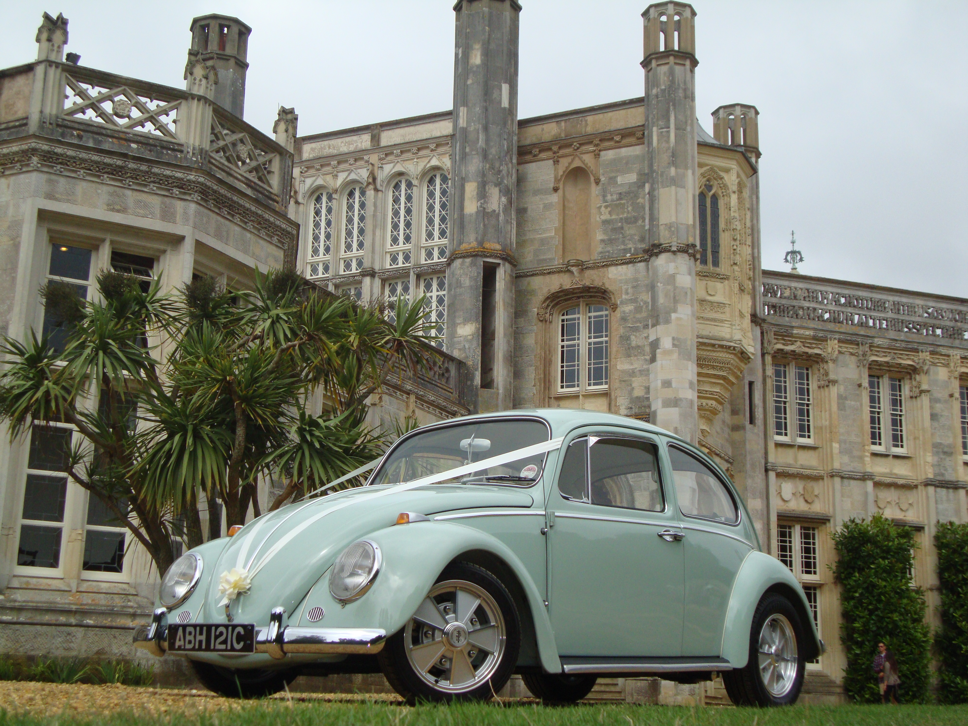 Dorset Dubhire S New Addition Lilah The 1965 Volkswagen